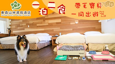帶毛寶貝一同出遊!打造寵物客房,擁有專屬寵物床。一泊二食超值專案等你搶購~