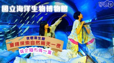 國立海洋生物博物館/夜宿/兩天一夜/海生館/海洋/探險