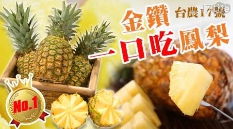 高雄大樹一口吃黃金蜜鳳梨