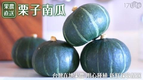 果農直配/日本/進口/栗子南瓜/南瓜/栗子/低卡/飽足感/水果/蔬菜