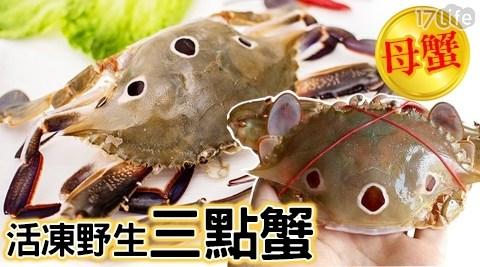 年菜/生鮮/母蟹/野生三點蟹/進口海鮮/年節/過年