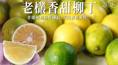 感冒預防/雲林古坑鮮採蜜糖雞蛋柳丁/腸胃/消化/高纖/維他命c/水果