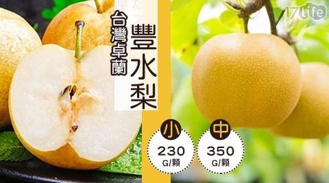 台灣卓蘭豐水梨/卓蘭豐/水梨/水果/果汁/季節水果