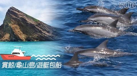 賞鯨 + 繞龜山島八景 二合一(含:賞鯨 + 環繞龜山島 + 專業解說 + 保險 + 杯水,行程約2.5~3小時)