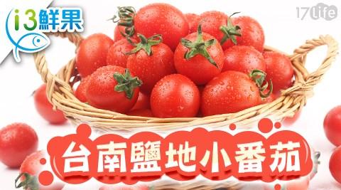 小番茄/番茄/台南鹽地小番茄/愛上鮮果/台南鹽水/鹹園仔地/季節水果