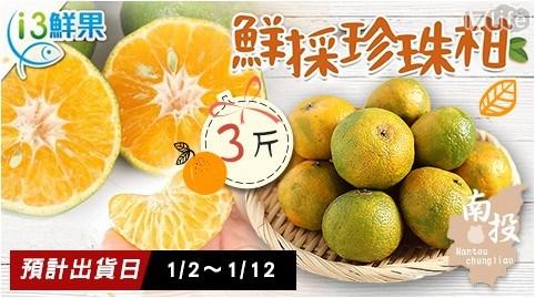 珍珠柑/橘子/愛上鮮果/水果