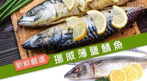 嚴選挪威薄鹽鯖魚/挪威鯖魚/鯖魚/薄鹽鯖魚/挪威薄鹽鯖魚