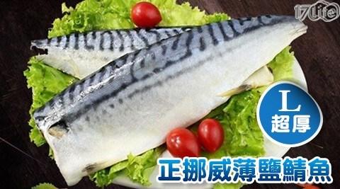 【饕寶食集】XL超厚正挪威薄鹽鯖魚