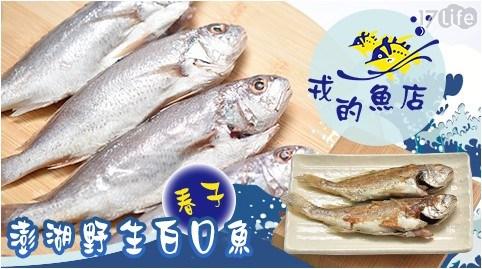 【戎的魚店】澎湖野生白口魚(春子)