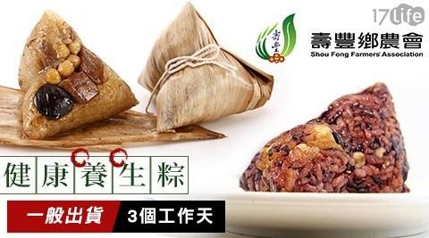花蓮/壽豐鄉/天然星/健康/養生/粽子/葷粽/素粽/素食/禮盒/端午禮盒/端午節