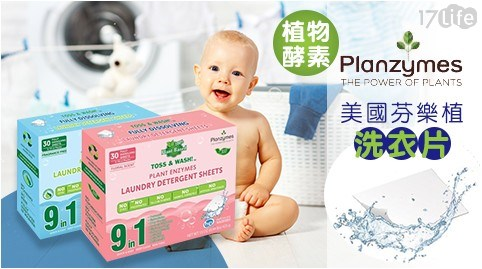 美國Planzymes芬樂植 植物酵素洗衣片/洗衣片/芬樂植/酵素/Planzymes/洗衣/洗衣紙