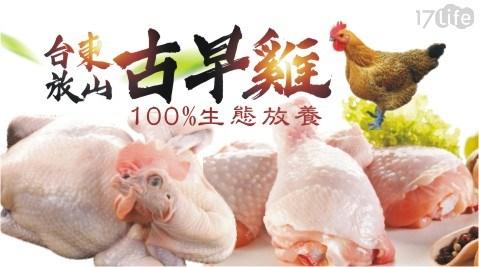 生鮮/食材/肉品/雞肉/全雞/燉煮/雞湯/台東/放山雞/烤肉/BBQ