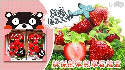 聖誕節/春節/草莓/水果/熊本/進口/空運/禮盒/2020/送禮
