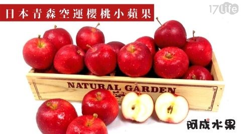蘋果/小蘋果/青森/日本/進口/水果/空運/早餐/季節限定