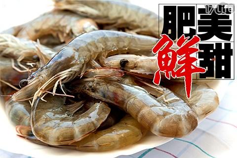 蝦/大白蝦/蝦子/凍凍鮮/南美洲/鮮甜/海鮮/白蝦