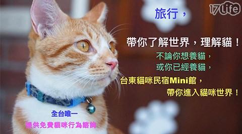 民宿/台東/貓咪民宿Mini館