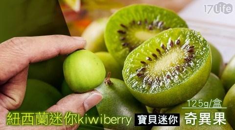 紐西蘭/進口/一口/水果/迷你/奇異果/袖珍/寶貝/kiwi/berry/季節/當季/新鮮/消化/女性/腸胃/酵素/養身/維他命C