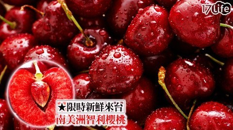 來自智利限時新鮮來台!數量有限!碩大飽滿,咬下就爆汁,手工摘取、嚴格篩選,零時差品嚐最棒的櫻桃季