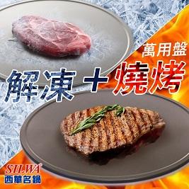 限時下殺↘節能極速解凍+燒烤兩用盤