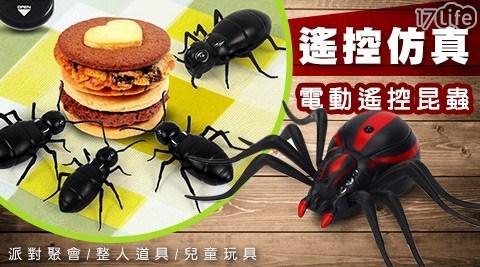 電動遙控昆蟲/遙控昆蟲/昆蟲/遙控/整人/交換禮物