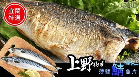 上野物產/宜蘭/薄鹽/鯖魚/魚片/海鮮/晚餐
