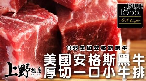上野物產/美國安格斯/美國牛/安格斯/黑牛/厚切/牛小排/牛肉/牛排/一口子/骰子牛