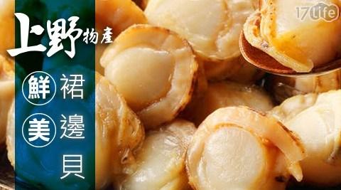 上野物產/鮮美裙邊貝/裙貝/蚌殼類/海鮮/蚌類/火鍋/燒烤