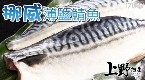 上野物產/挪威薄鹽鯖魚片/挪威/薄鹽/薄鹽鯖魚片/薄鹽鯖魚/鯖魚片/鯖魚/海鮮/魚/生鮮