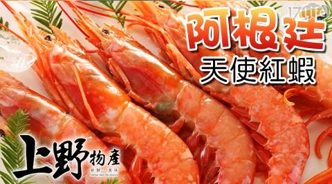 阿根廷/天使紅蝦/海鮮/蝦子/蝦膏/蟹膏/年菜
