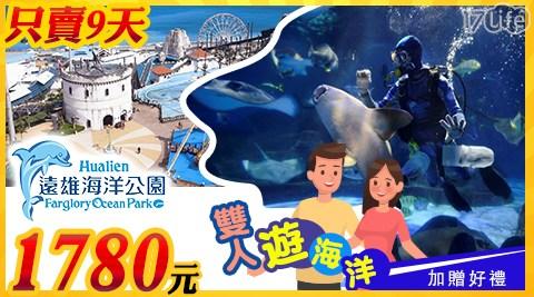 遠雄海洋公園/花蓮/海洋公園/遠雄/壽豐/海豚/家族/花蓮遠雄海洋公園/樂園