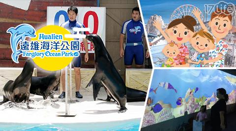 遠雄海洋公園/花蓮/海洋公園/遠雄/親子/壽豐/海豚/海獅