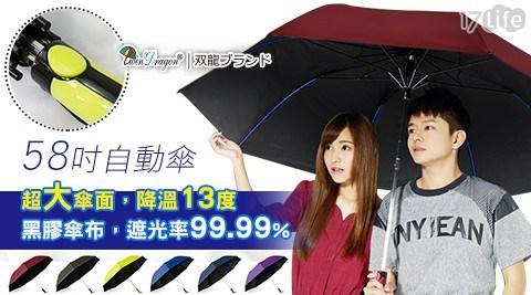 TDN/玩酷/極大/54吋/防風/樹脂/運動傘/傘/雨傘/摺疊傘